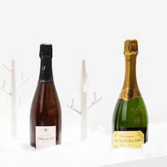 Winter champagnes