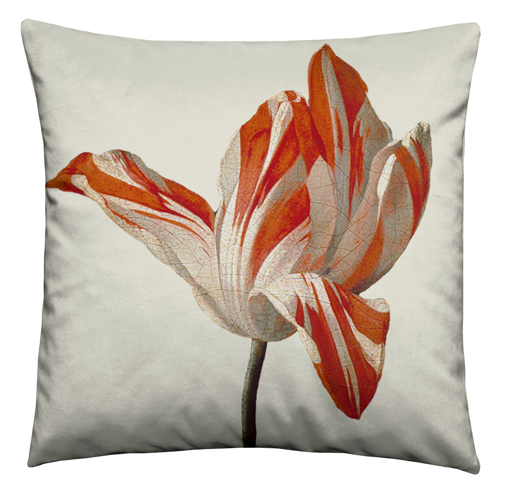 Ashmolean - Tulip Cushion