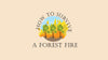 How to Survive a Forest Fire while Hiking or Camping