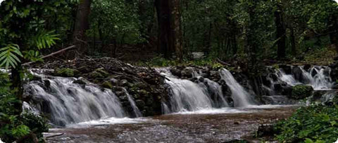 Waterfalls at Agumbe
