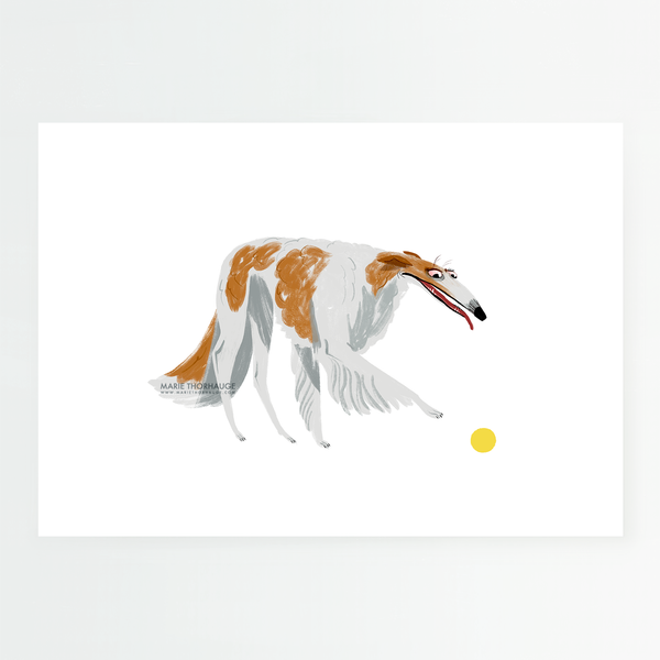 Borzoi and Ball