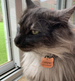 Pet tag - Cat shape