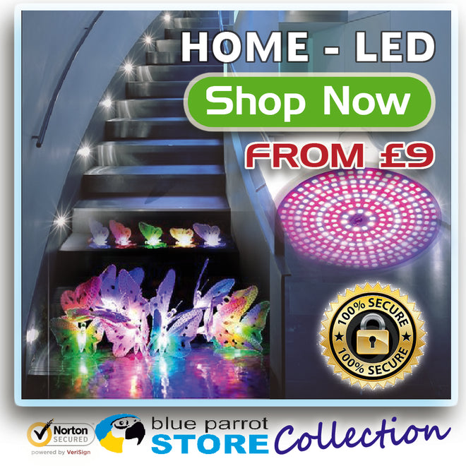 LED-Lighting/LED-Bulb/Offers