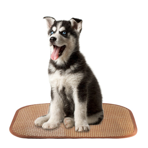 Pet Mat Summer Pet Heat Faster Dog Mat House Nest Mat Pad for Summer Puppy Cooling Mat Pet Sleeping Beds