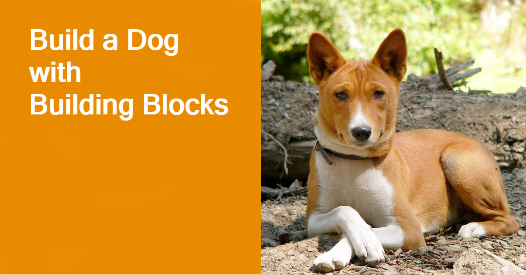 Build a Dog with Building Blocks