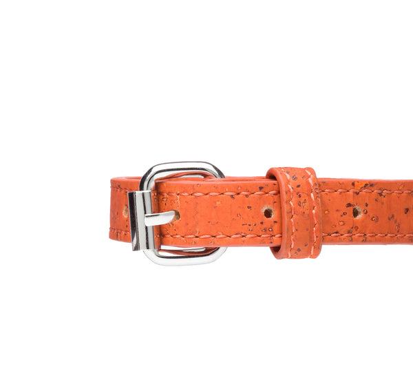 dog-collar-xs-cork