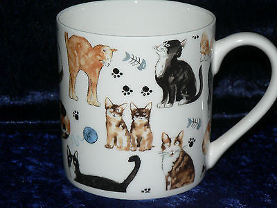 Cat 1 pint bone china mug cats CHINTZ all around mug