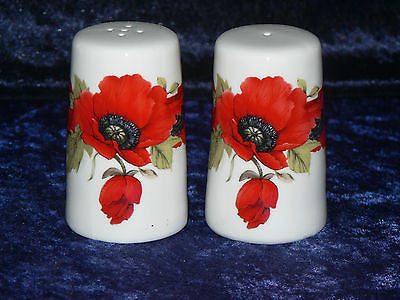 Poppy bone china cruet set. Salt pepper set decorated with beauitful red poppies