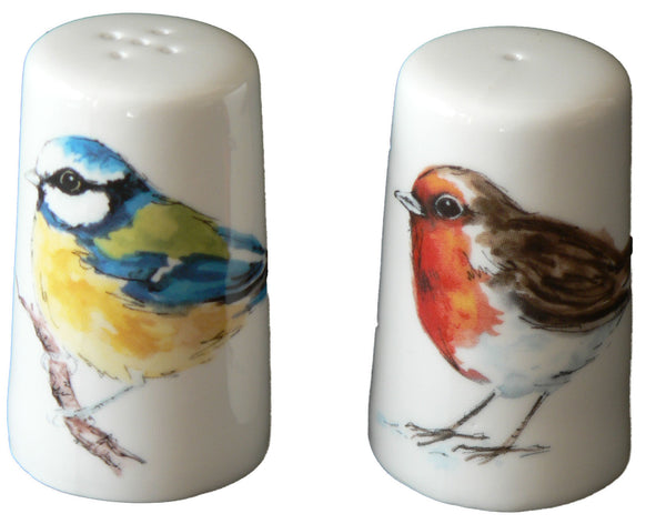 Birds bone china cruet set. Salt pepper set decorated with garden birds