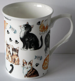Cats and kittens design bone china 10oz mug,