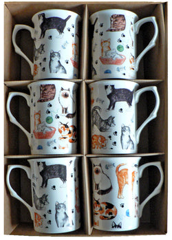 Cat Bone china mugs - set of 6 gift boxed 10oz mugs different cats all round
