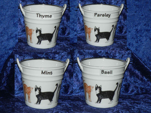 Cats design herb pot. Cats pot holder for your herbs various herbs to choose