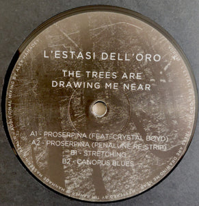 L'estasi Dell'oro - The Trees Are Drawing Me Near - Vinyl at The Sound Arcade