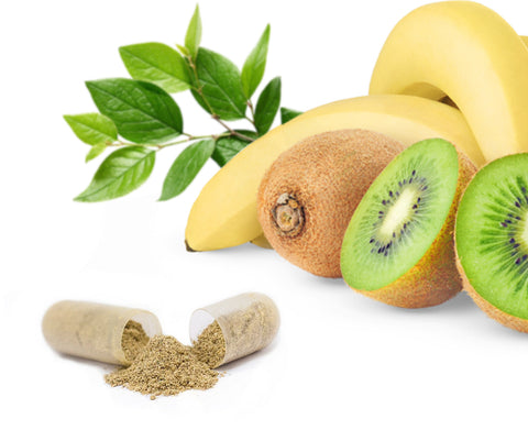 NORDIQ Nutrition Multi Nutrient open capsule with kiwi, spinach leaves and banana.
