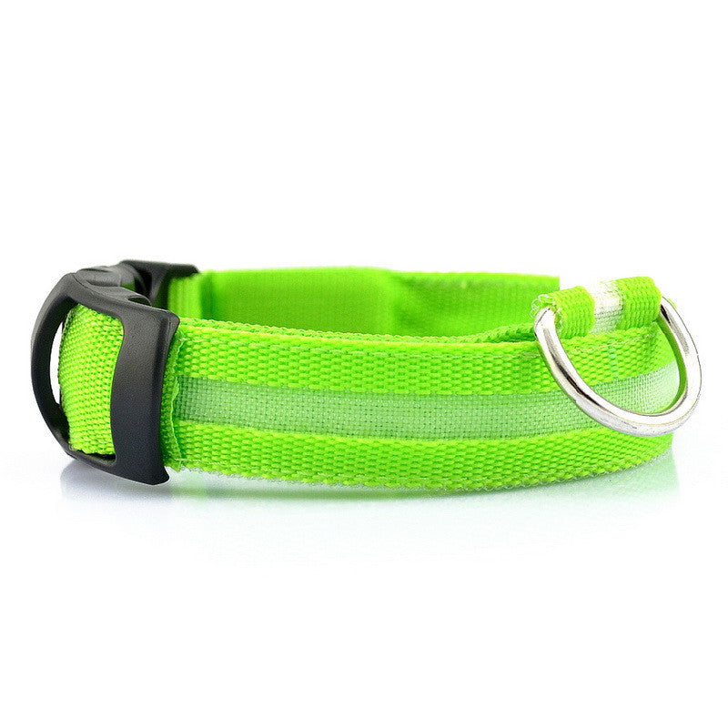 Rechargeable LED Dog Collars Glow In The Dark Collar