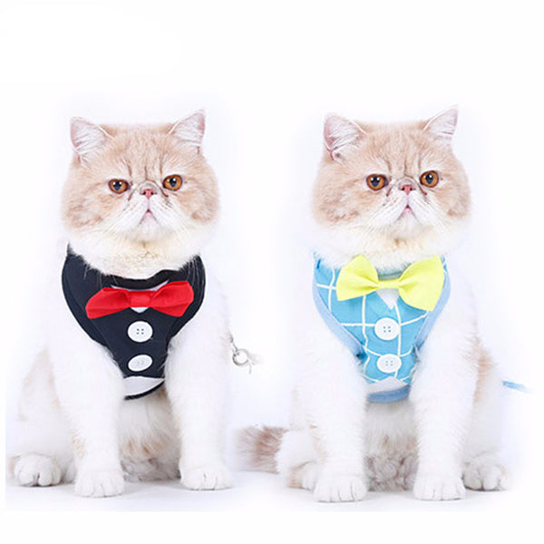 Cute Tuxedo Harness For Cats