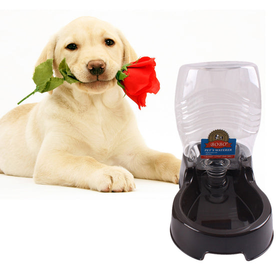 Automatic Water Dispenser for Dogs and Puppies