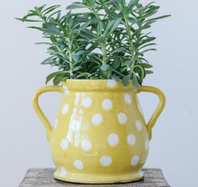 LARGE Yellow and White Polka Dot Terra-Cotta Planter