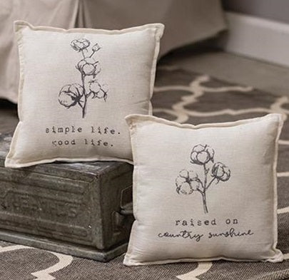 Simple Life and Raised on Country Sunshine Pillows, Set of 2