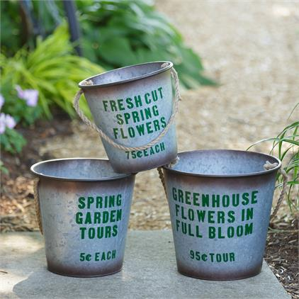 Vintage Style Greenhouse Flowers Pails, Set of 3