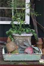 Shabby Chic Distressed Green Wood Tray With Handles