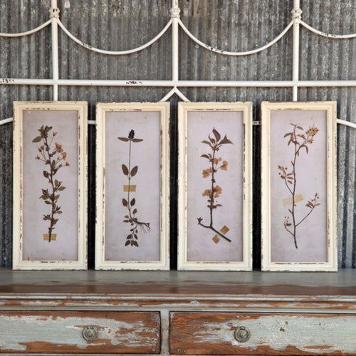 Pressed Botanical Prints, Set of 4