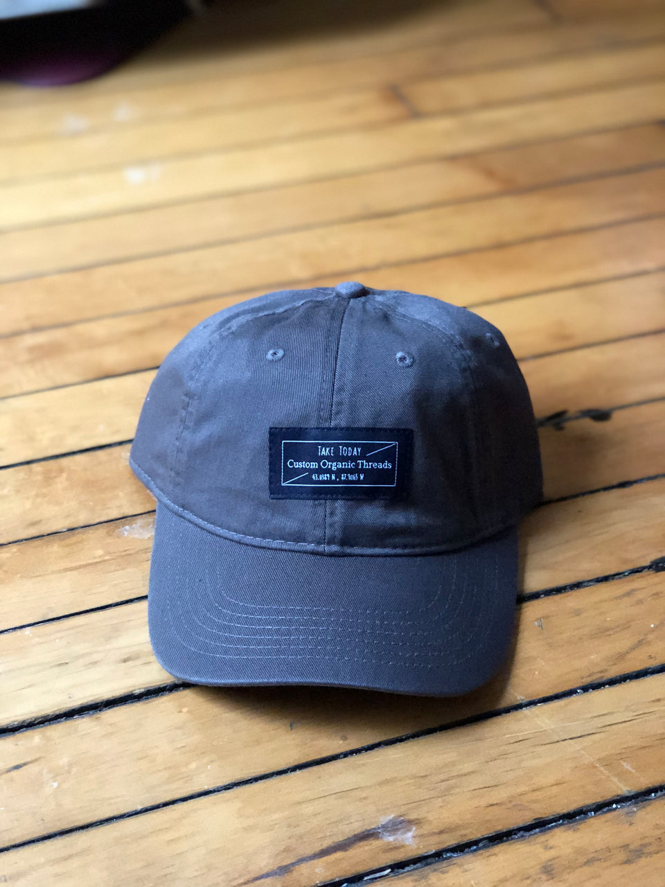 """downtown"" dad hat in dusk - Take Today Community"