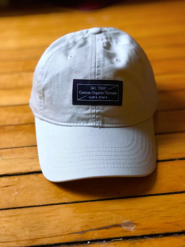 """downtown"" dad hat in chameleon"