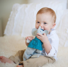 Alvin Soft Toy & Teether