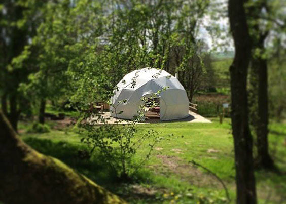 woodland glamping site