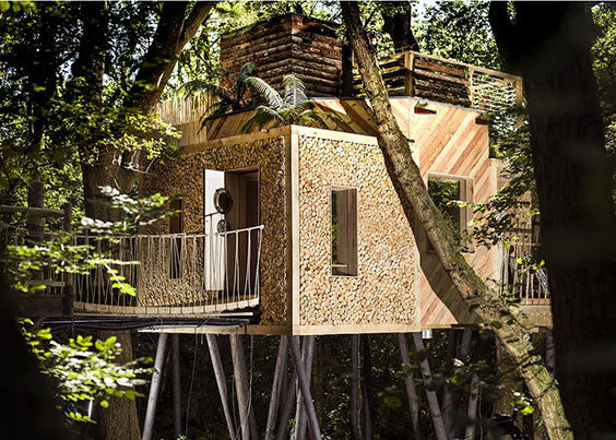 treehouse glamping in dorset