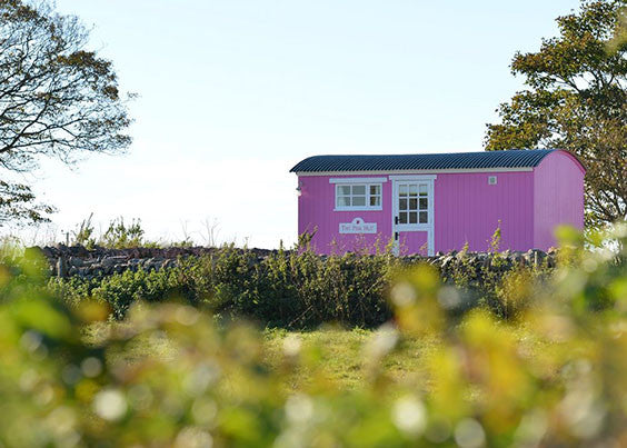 The Pink Hut - Anglesey