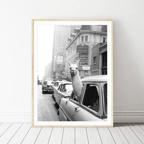 Llama Rides New York Wall Art