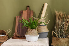 Exclusive Contemporary Hand Weaved Plant Baskets