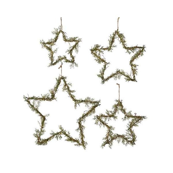 Ornament - Star - Iron Branches