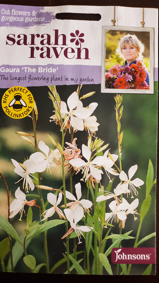 Gaura 'The Bride' - Seed Packet - Sarah Raven