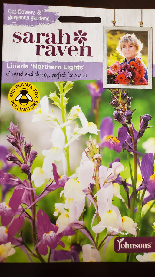 Linaria 'Northern Lights' - Seed Packet - Sarah Raven