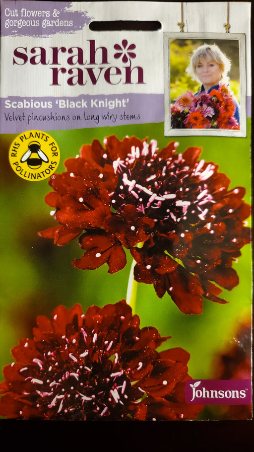 Scabious 'Black Knight' - Seed Packet - Sarah Raven