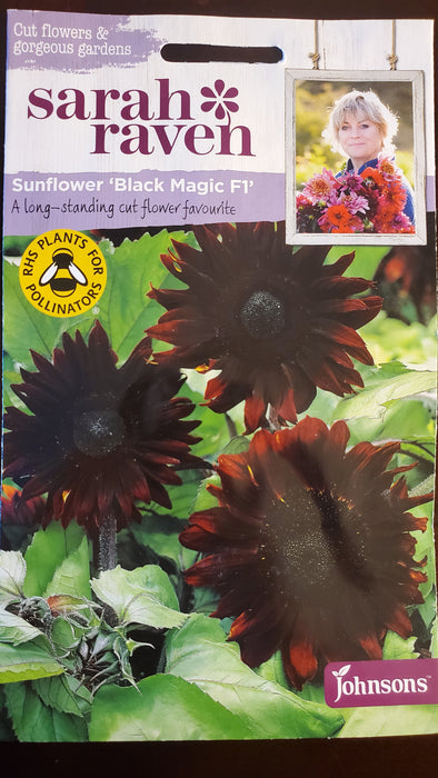 Sunflower 'Black Magic F1' - Seed Packet - Sarah Raven