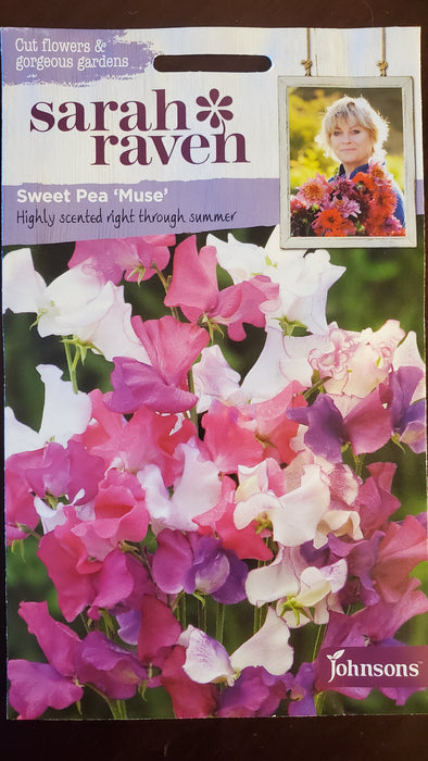 Sweet Pea 'Muse' - Seed Packet - Sarah Raven