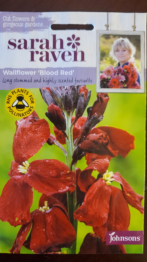 Wallflower 'Blood Red' - Seed Packet - Sarah Raven