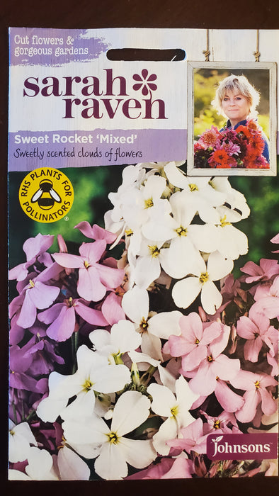 Sweet Rocket 'Mixed' - Seed Packet - Sarah Raven