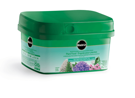Miracle-Gro Evergreen 500g