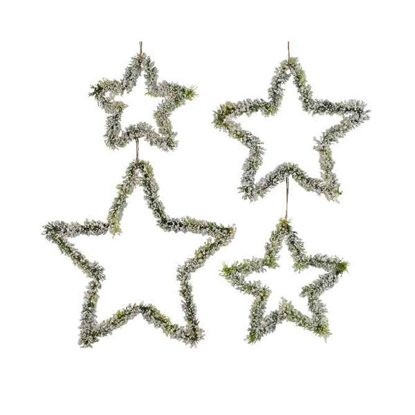 Ornament - Star - Iron Berries