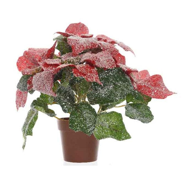 Planter - Silk Poinsettia - Red