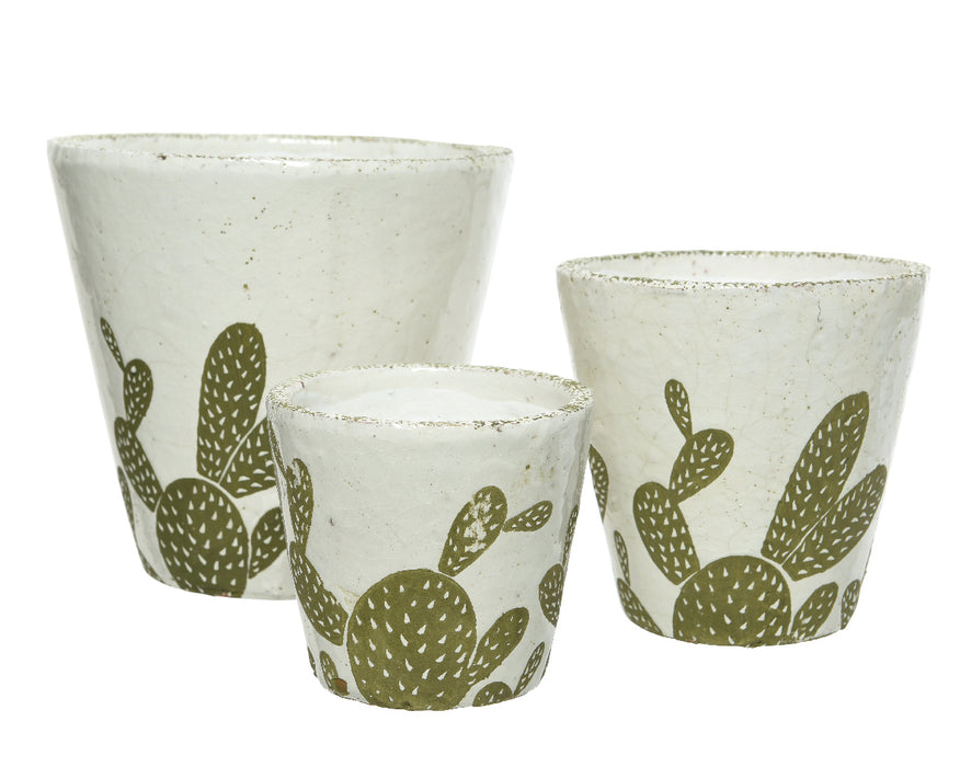 Pot Terracotta off white with cactus