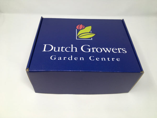 A Touch  of Dutch Plant Club