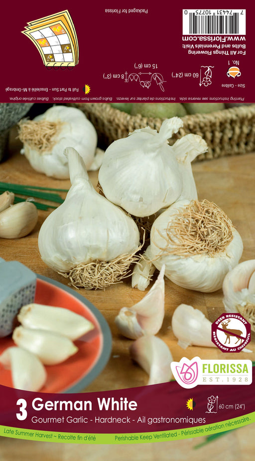 Garlic - German White