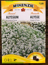 Seed packets - Alyssum