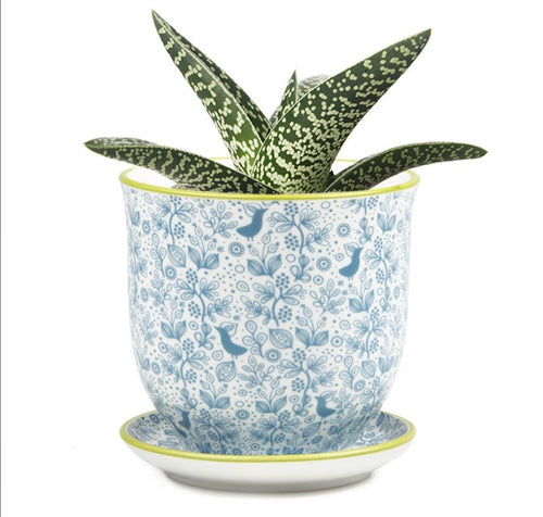 Pot & Saucer - Liberte 3 Blue Birds